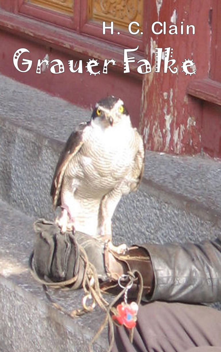 K1024_2015-08-03 5 Umschlag grauer Falke