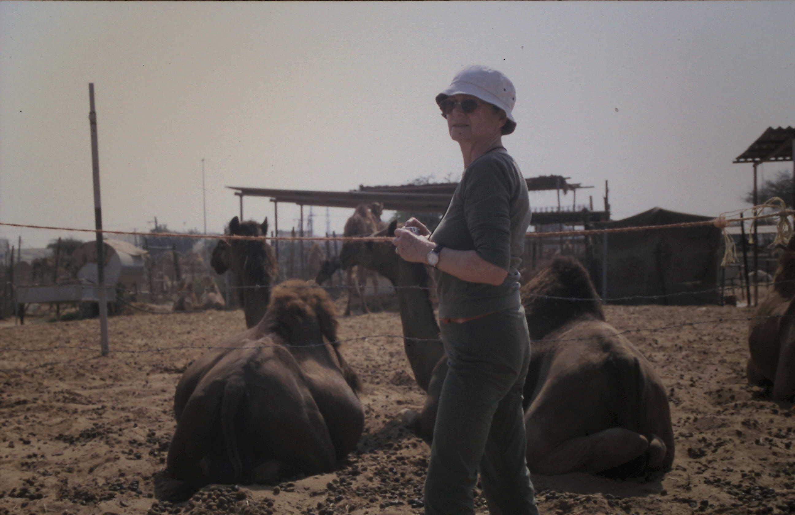 1971-08 Oman, HCC auf Kamelmarkt